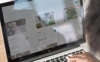 Gli step fondamentali per aprire un e-commerce